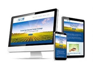 Trueview FX Web Design