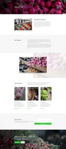 Farmers Market Layout Pack - About Page