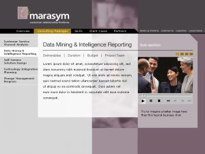 Web Design Marasym Package